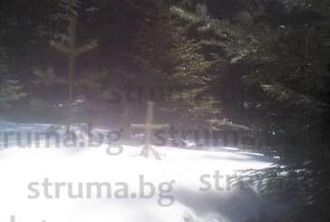 МИСТЕРИЯ! Бор с формата на кръст и странни сънища с починалите му приятели накараха кмета на Бистрица да постави параклис насред гората