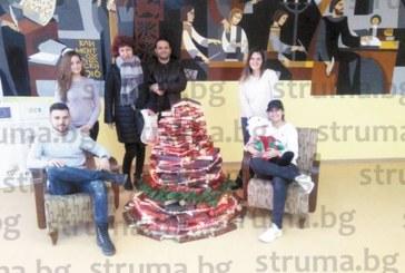 Коледна елха от книги вдигнаха в Математическата