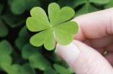 Как да преобърнем късмета си само за 2 минути