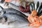 ПОЛЕЗНИ СЪВЕТИ! Каква риба да купуваме за Никулден