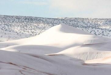 Сняг валя в Сахара /СНИМКИ/