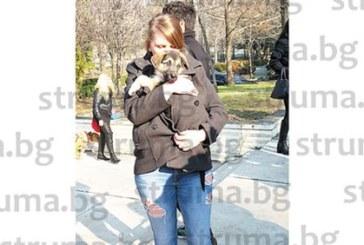 """7 кученца си намериха стопани на старта на кампанията """"Не купувай, осинови"""" в Благоевград"""