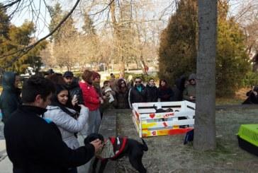 """Успешно начало за кампанията """"Не купувай, осинови"""" в Благоевград"""