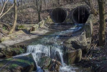 Суровата вода – полезна или опасна тенденция