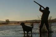 Ловно куче отстреля стопанина си