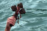 ЗА ПЪРВИ ПЪТ В БЛАГОЕВГРАД! Две момичета се хвърлят за кръста, изправят се пред 82 смели мъже