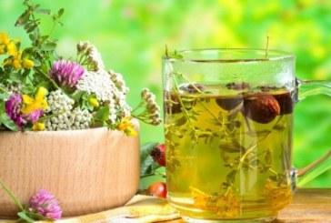 Експресна диета с чай сваля 10 кг за 5 дни