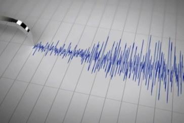 Ново земетресение в Петричко
