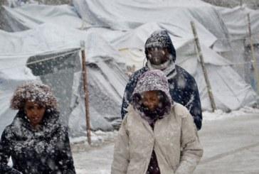 Откриха 15 сирийски бежанци, измръзнали до смърт