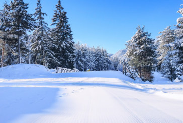 НАП удря по зимните курорти, предстоят над 5000 проверки