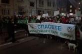 25 града протестират в защита на Пирин