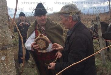 Асен Ерделски от Селище е новият Цар на виното в Дъбрава