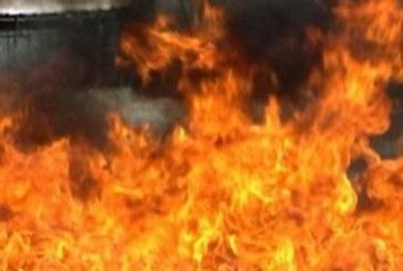 ОГНЕН АД В ЮГОЗАПАДА! Животни изгоряха като факли