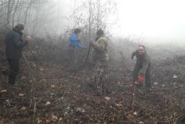 Служители на ЮЗДП продължават почистването  по границата с Македония