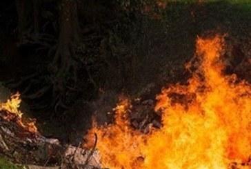 Мъж изгоря жив в колата си