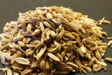 Семена от резене – при високо кръвно и за здрави очи