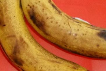 Изгониха фирмата, доставяла развалени банани за закуска на деца в училище в Сапарева баня