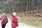 Опасни дървета в частна гора край алеята за Бачиново застрашават живота на минувачи и велосипедисти, сред собствениците са фамилия Мангушеви и съпругата на губернатора Д. Башлиева