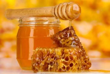 Тези чудеса ще се случат с организма ви, ако ядете мед всеки ден