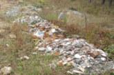 Арестуваха шофьори, изсипвали камиони с боклуци в гората
