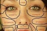 Пъпките разкодират кой орган страда- вижте къде са по лицето ви и разберете какво да направите