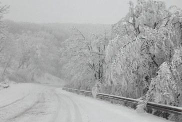 Зимата се завърна! Сняг и студ сковават страната