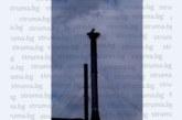 Първият щъркел кацна в Дупница