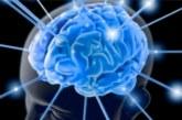 Колко процента от мозъка си ползваме всъщност