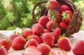 5 храни, които се борят с раковите клетки