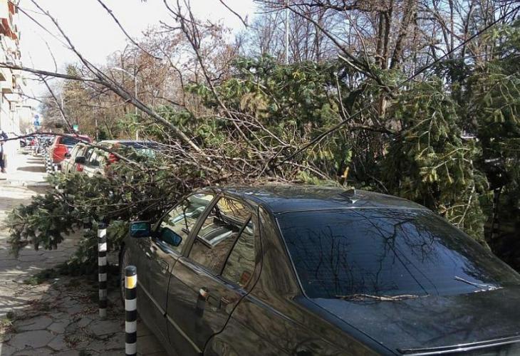 Ураганен вятър причини щети в София