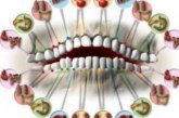 Болките във всеки един зъб са сигурен сигнал за проблем с тези органи!