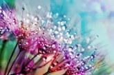 Вашият цвят за пролетта според зодията ви