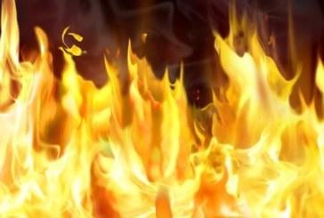 """Пожар гори до магистрала """"Струма"""""""