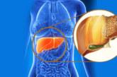 Разпознайте омазнен черен дроб! Ако имате тези симптоми незабавно отидете на лекар!