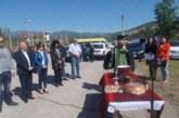 100-килограмови дългокосмести пръчове голямата атракция на традиционния фермерски събор в Кресна