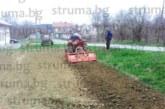 Кюстендилци подготвиха нивите за сеитба на картофи, от години разчитат на семе от Самоков, за да са здрави, пръскат още при оранта, покриха и лехите за зеленчуковия разсад
