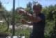 АКЦИЯ ПО СИГНАЛ! Екскмет от СДС арестуван след полицейски тараш в дома му, скрил канабис на 3 места в двора