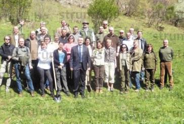 ПО ИДЕЯ НА ШЕФА НА ЮЗДП Д. ДАМЯНОВ! Първа по рода си европейска горичка засадиха 28 висши лесовъди от ЕС до рилското с. Падала