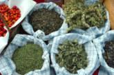 НОВ БИЗНЕС ТРЪГВА В ЮГОЗАПАДА! Преустрояват завод за безалкохолни напитки във фабрика за растителни екстракти