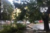 Силна буря удари Стара Загора и нанесе щети
