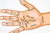 Разберете своята съдба според линиите на дланта си
