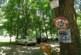 Читател на struma.bg ги излови! Нагли шофьори атакуваха алеята на парк Бачиново, превърнаха я в паркинг