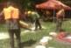 """МЪЖКИ СПОРТ! 28 състезатели от 14 горски и ловни стопанства на ЮЗДП мериха сили в надпреварата """"Най-добър секач"""""""