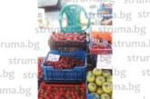 Първите кюстендилски череши се появиха на пазара с цена 5 лв./кг