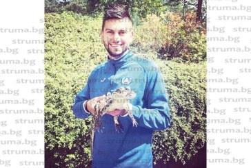 """Футболистът на """"Левски"""", благоевградчанинът Ст. Костов, си намери нов приятел – бебе крокодилче"""