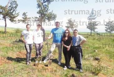 Младо момиче от Разлог стартира инициатива за залесяването на Голак, само за ден доброволците засадиха 100 борчета