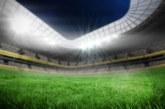 Няма да повярвате какво животно прекъсна футболен мач