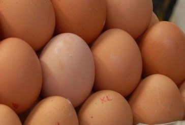 Внимание! Не купувайте от тези яйца, опасни са