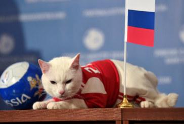 Ахил с първа прогноза: Русия бие Саудитска Арабия