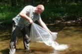 ЮЗДП подпомага биоразнообразието чрез зарибяване с балканска пъстърва